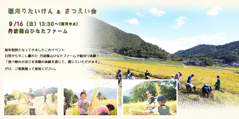 稲刈り2018